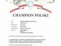 Championat_Toshiko