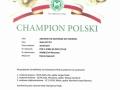 championat_Sachi
