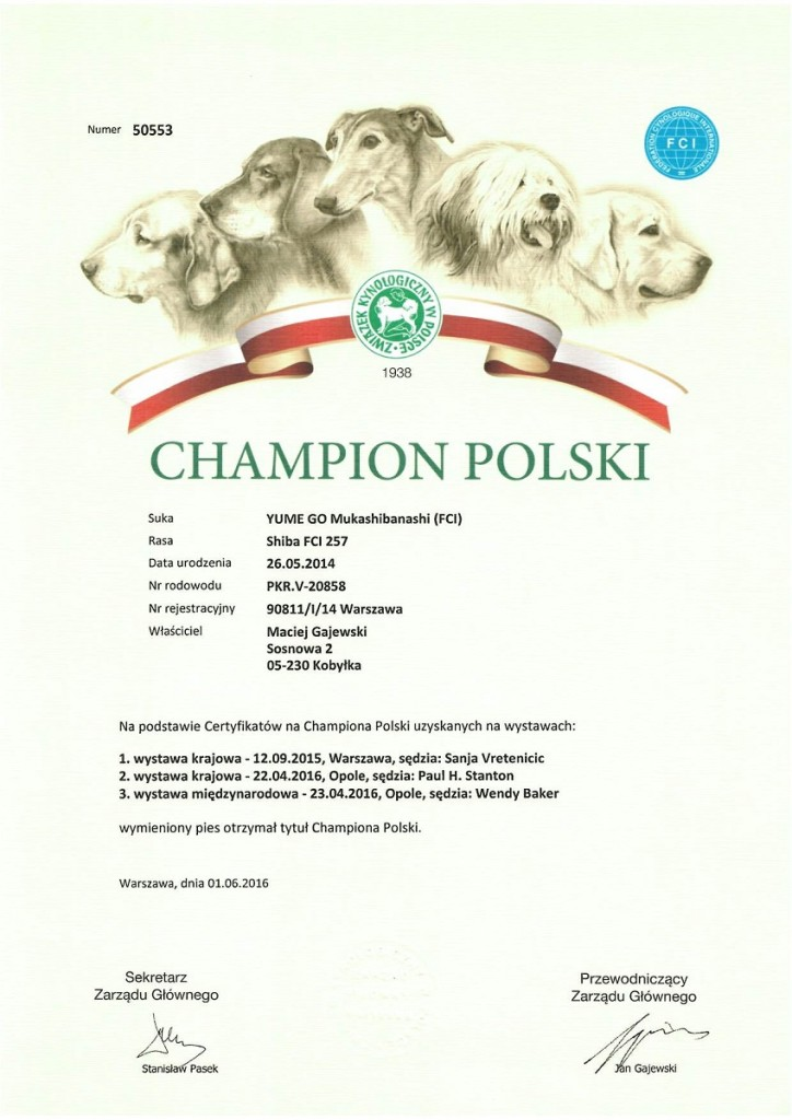 champion Yume