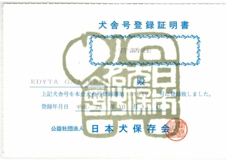 certyfikat_nippo